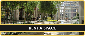 Rent a Space - Shopping Mall